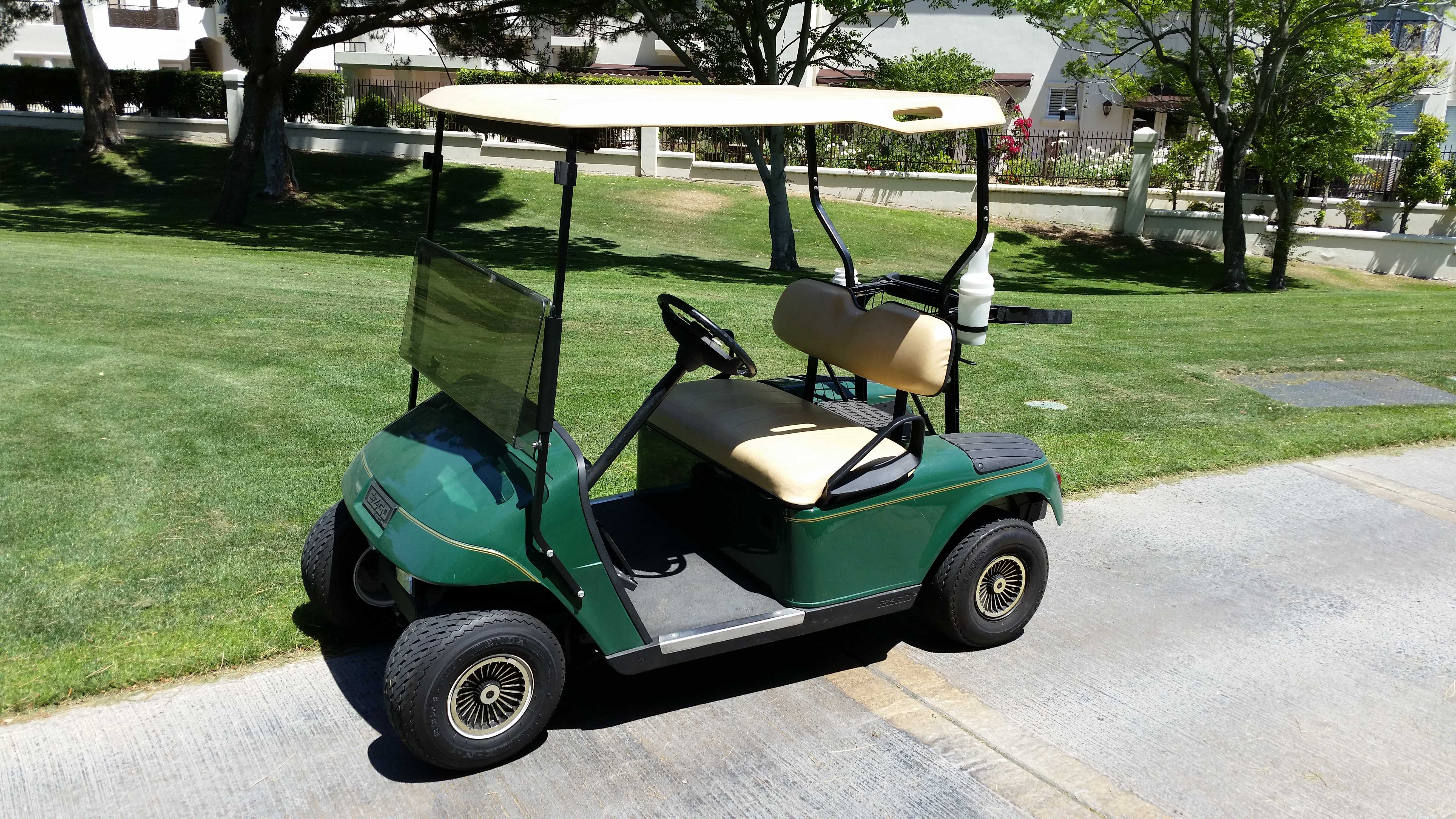 2 Passenger Golf Cart Rentals